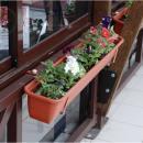 Цветочный ящик с закреплением на перила тентовой веранды летнего кафе.